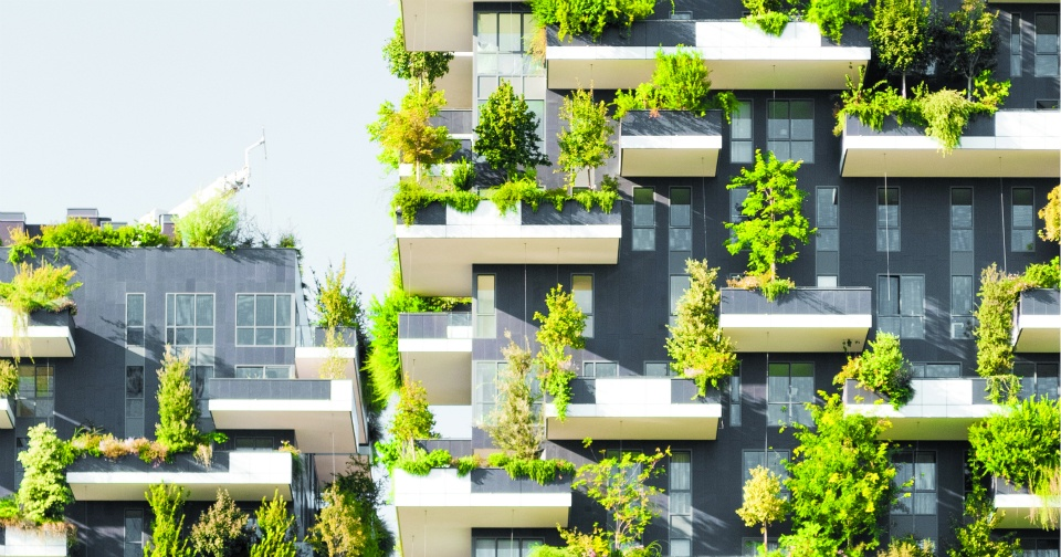 TIPS TO REDUCE BUILDING CARBON FOOTPRINT